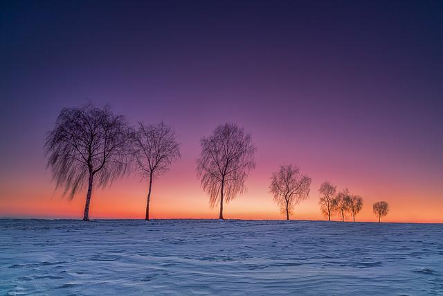 Sun goes Winter stays