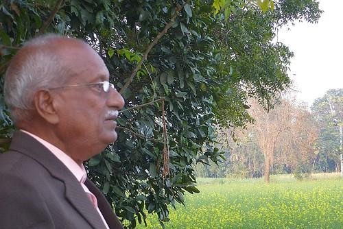 Ramanandan Prasad Sharma surveying his fields