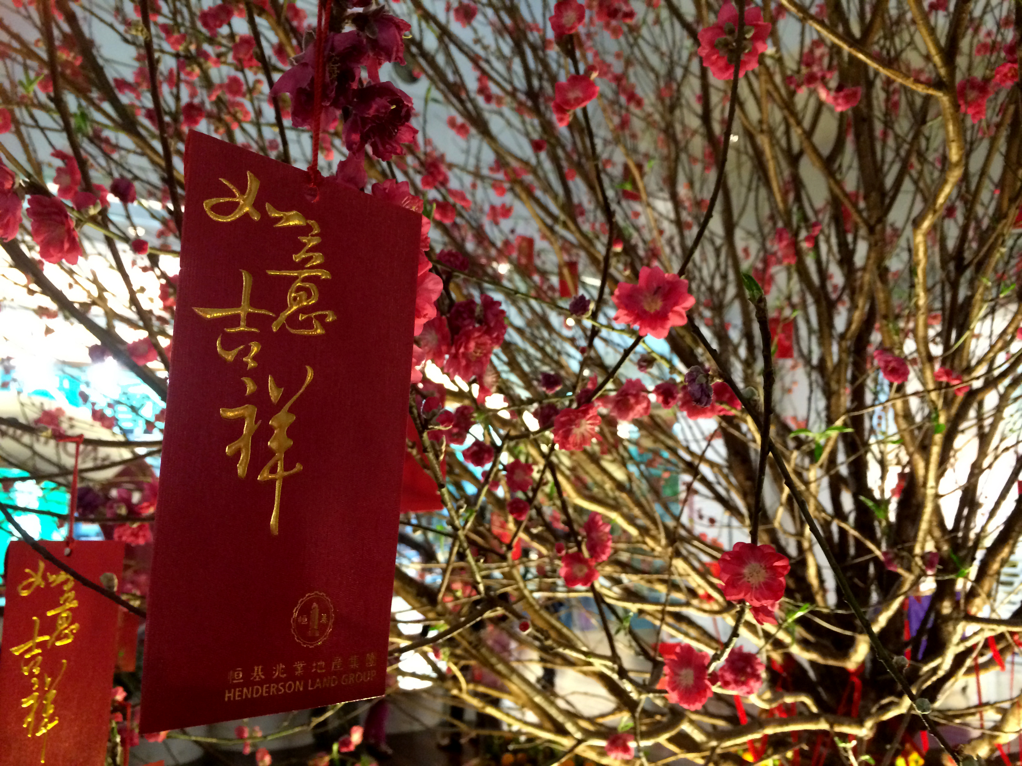 20 Common Chinese New Year Phrases And How To Pronounce Them
