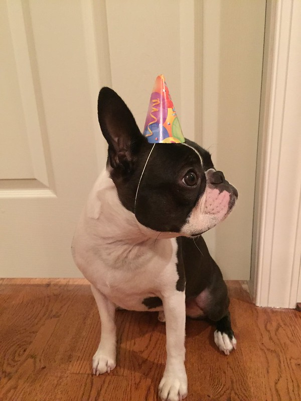 Charlie's 3rd birthday 2015