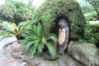 CIMG1122 SuperTanuki en el  Infierno Umi Jigoku (Beppu) 13-07-2010 copia