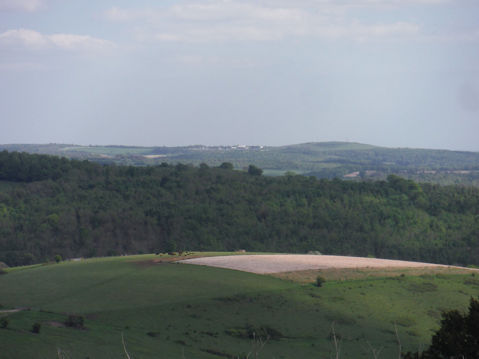 The Trundle (St. Roche's Hill) and Goodwood Race Course, from Pen Hill SWC Walk Rowlands Castle Circular - Extension