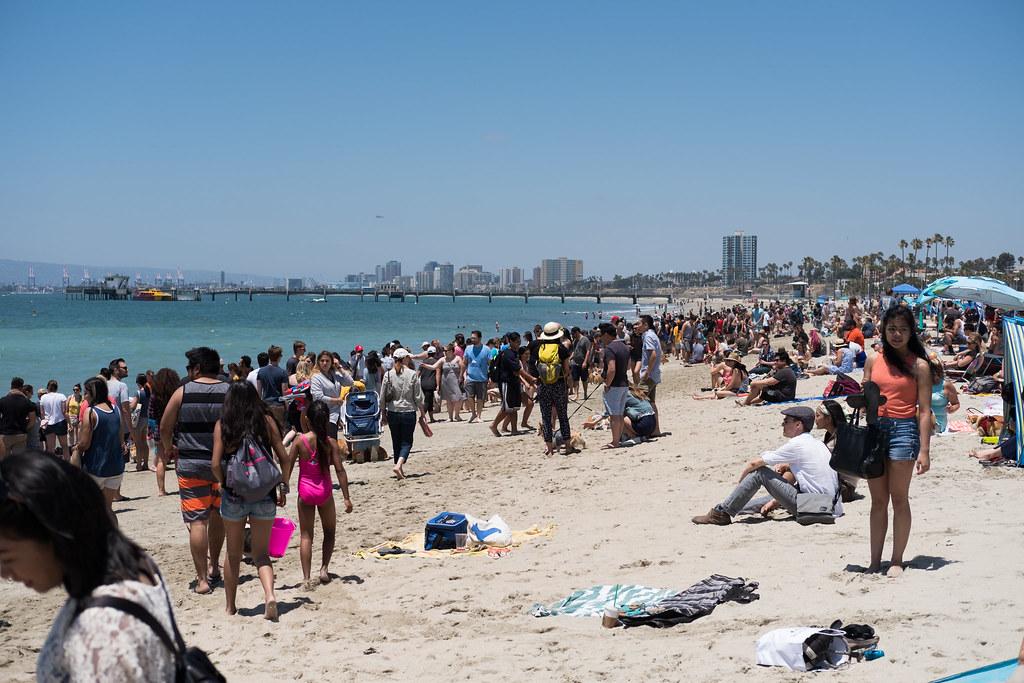 Corgi Beach Day