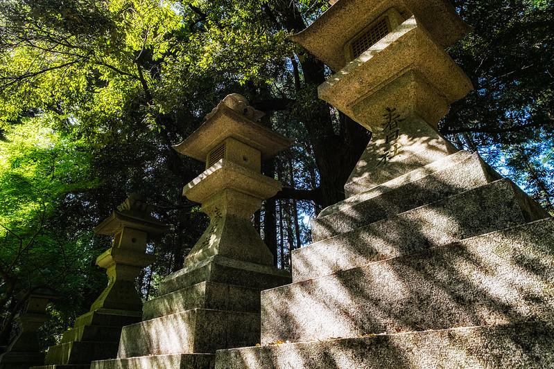 Kasuga Shrine *