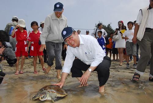 農委會主委陳保基親送海龜重返大洋。(圖片來源:林務局)