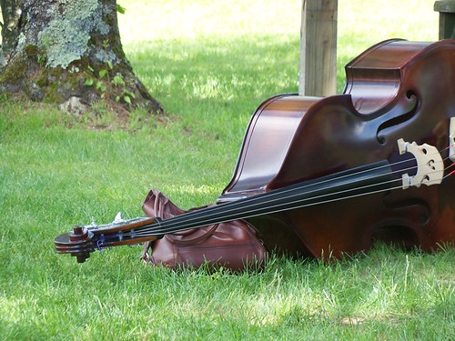 bluegrass bass