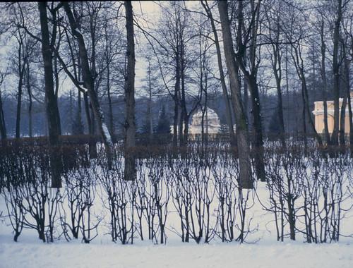 Leningrado from life of Iosif Brodskij