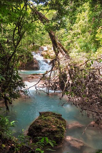 Cascadas de Agua Azul (22)