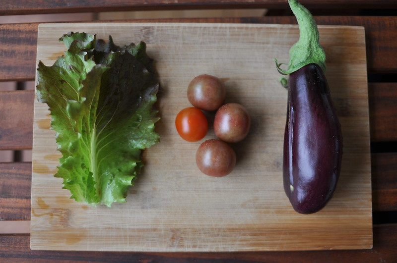 Lettuce, tomatoes and aubergine
