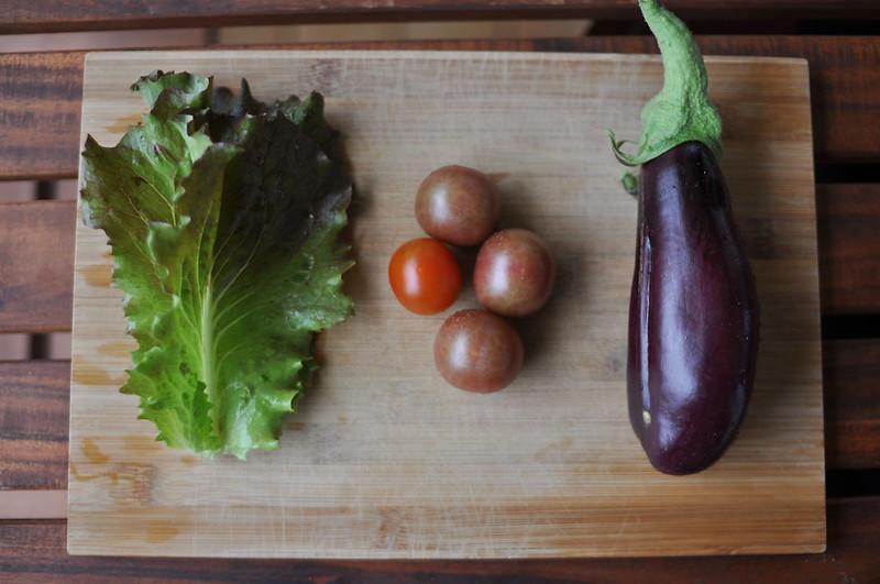 Lettuce, tomatoes and aubergine