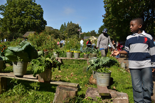 Fifty-five pounds of produce, including peppers, radishes, tomatoes, string beans, broccoli, carrots, butternut squash, turnips, okra, greens, and herbs were sorted and laid out for shopping at the Junior Botanist and Plant Investigator reunion. Photo by Blanca Begert.