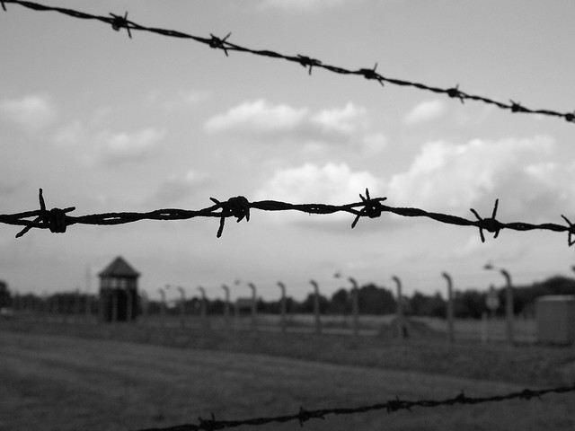 Barbed wire at Auschwitz II-Birkenau
