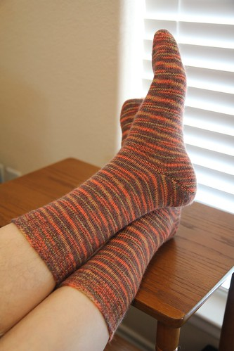 Dan Socks
