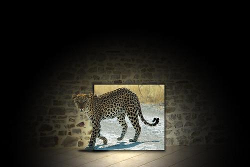 3D frame