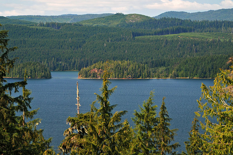 Straggling Islands in Holberg Inlet, North Vancouver Island, British Columbia, Canada