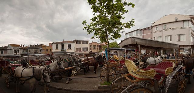Horsecar park