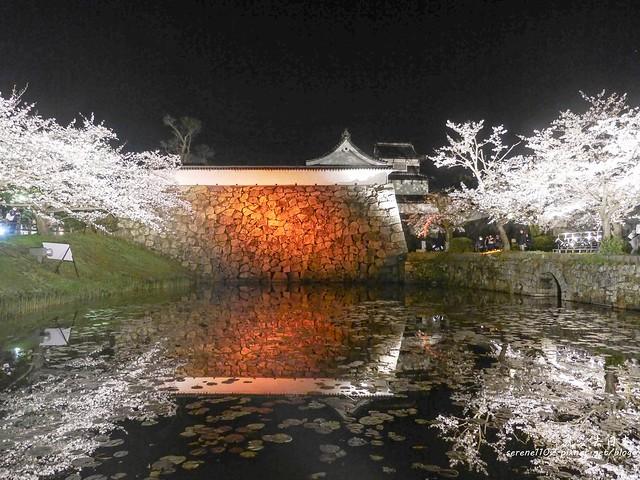 20140327山陽D2熊本-1130390