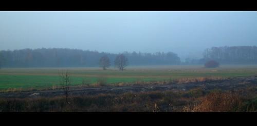 mist fog landscape poland