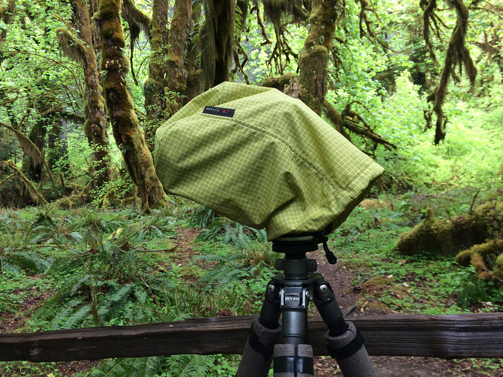 My camera and lens inside a Tom Bihn Stuff Sack to keep them dry during a rainy hike in the Hoh Rain Forest