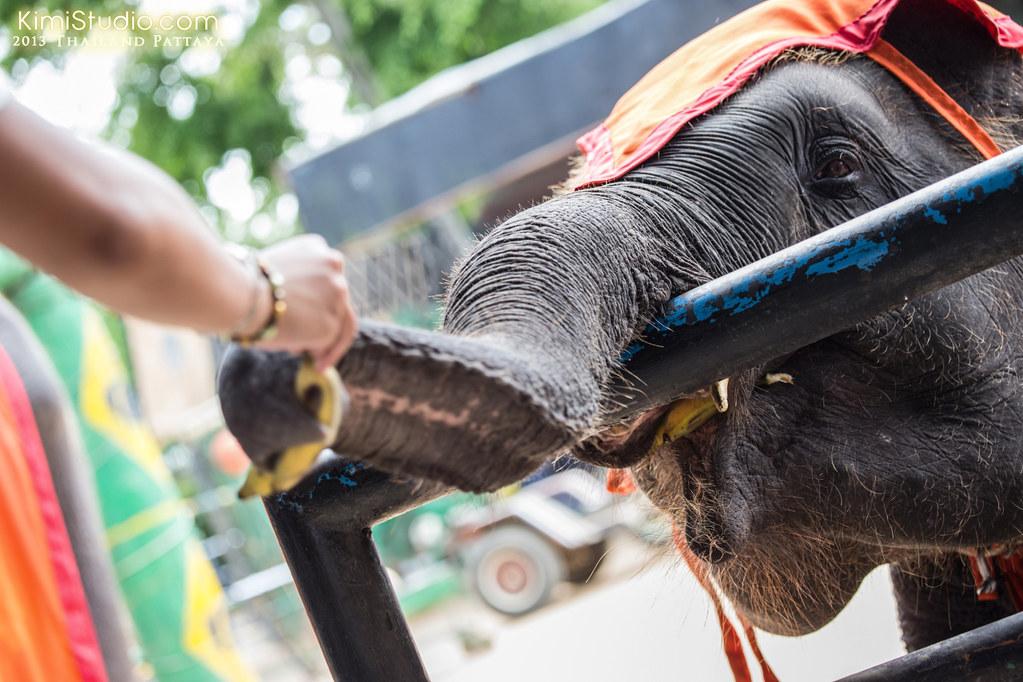2013.05.01 Thailand Pattaya-019