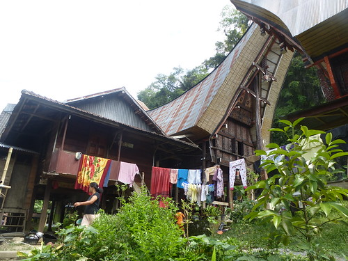 Sulawesi13-Makale-Rantepoao (37)