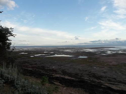Low tide at Camp Buchan, Belfast, Prince Edward Island (2)