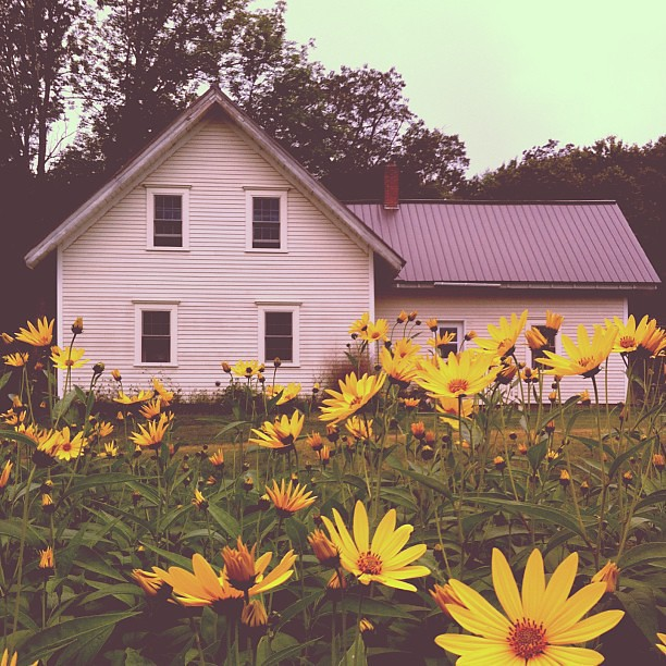Last day of August. #farmhouse #maine