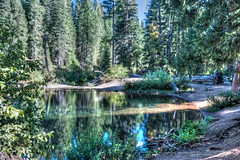 Cattle Camp Swimming Hole