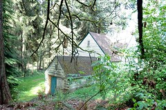 Park Manager's closed up house and storage building, turquoise green door, mossy roof, mossy branches, trees, forest, Seward Park, Seattle, Washington, USA
