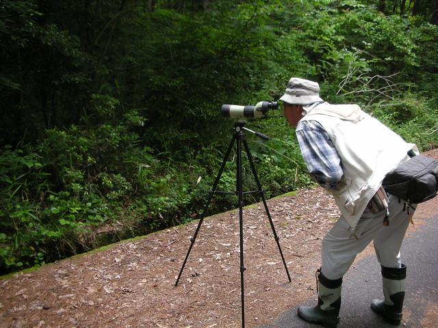 鳥ではなく・・林床の植物を観察.「よく見える〜!」