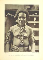 """British Library digitised image from page 229 of """"Unter den Papua's. Beobachtungen und Studien über Land und Leute, Thier- und Pflanzenwelt in Kaiser-Wilhelmsland ... Mit 46 Vollbildern in Lichtdruck, etc"""""""