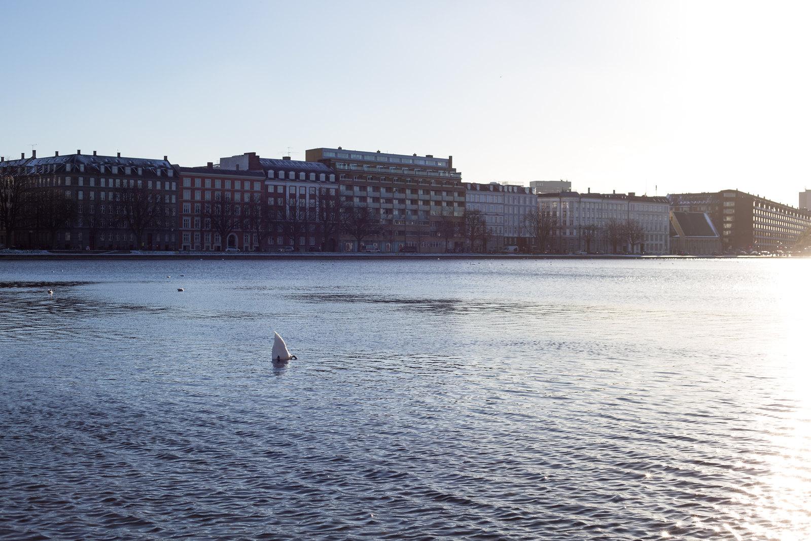København dec 2013