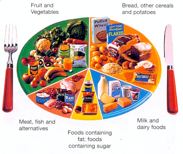 13. diet-plans