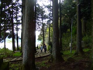 箱根神社・芦ノ湖の鳥居周辺