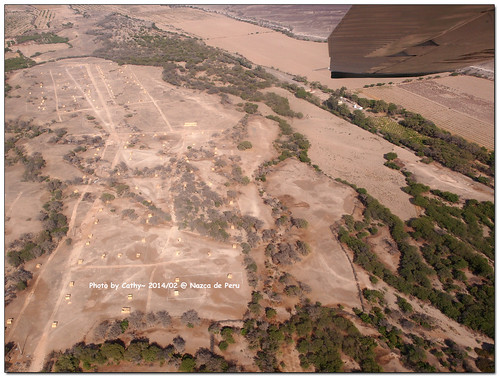 Nazca-14