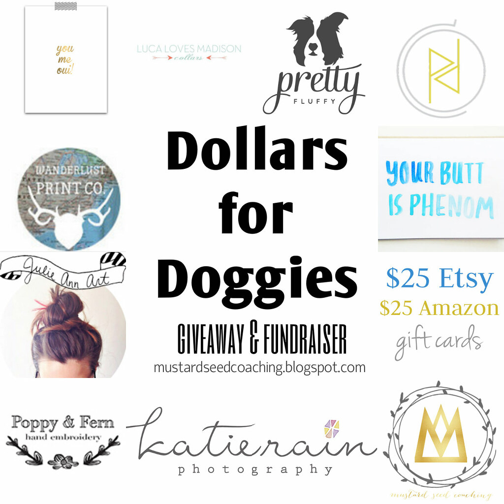 Dollars For Doggies 2014!