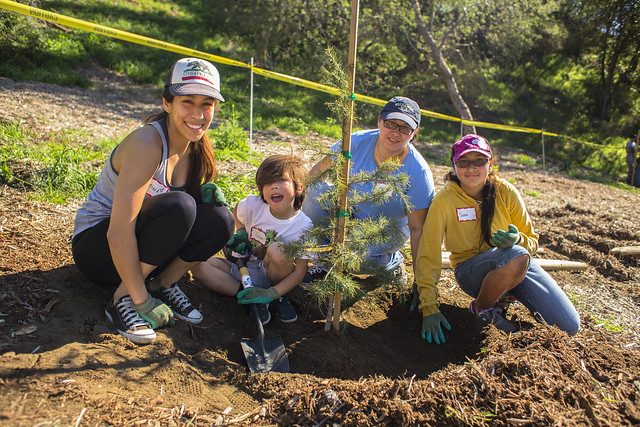 Griffith Park Tree Planting - 2/14/15