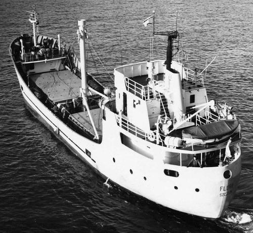 FLORA-MMG-HM-RfotI-696-101