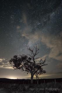 Watching Stars before Dawn
