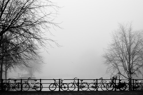 Amsterdam's Fog