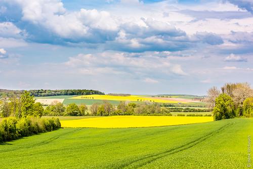 france landscape frankrijk lente fr buiten landschap rapeseed koolzaad villarslepautel