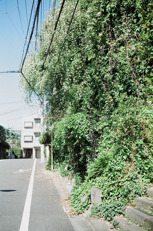 上野・谷中 by Rollei B35 2016年5月4日