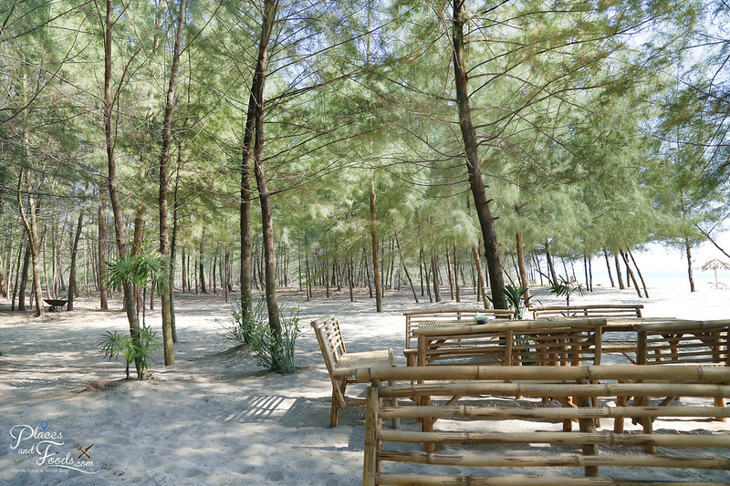 ko kho khao hula beach pine trees with white sand