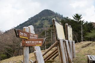 雁峠着・・・笠取山を見上げます