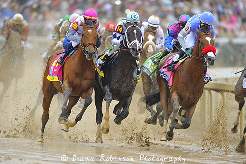 Horses in the First Turn of the Kentucky Derby
