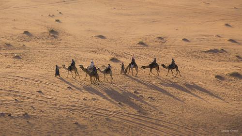 sunset canon landscape eos evening sand desert 4 full adobe frame rum paysage soir wadi aqaba jordanie lightroom désert 6d aride nocommercialuse pasdutilisationcommerciale commercialuseisprohibited utilisationcommercialeinterdite
