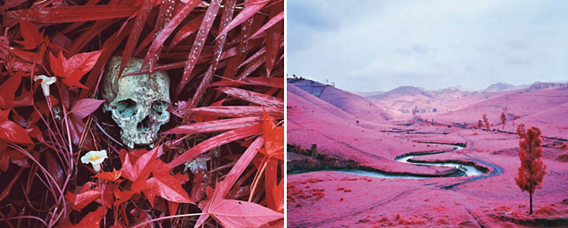 richard-mosse-at-venice-art-biennale-designboom
