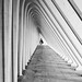 white depth by Georgie Pauwels