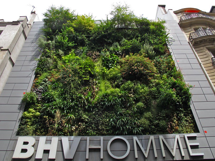 BHV vertical garden, Paris