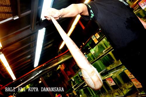 Bali Hai Kota Damansara 2